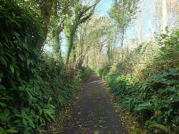 Photo Gallery Image - Lane leading to the village from Moditonham Quay